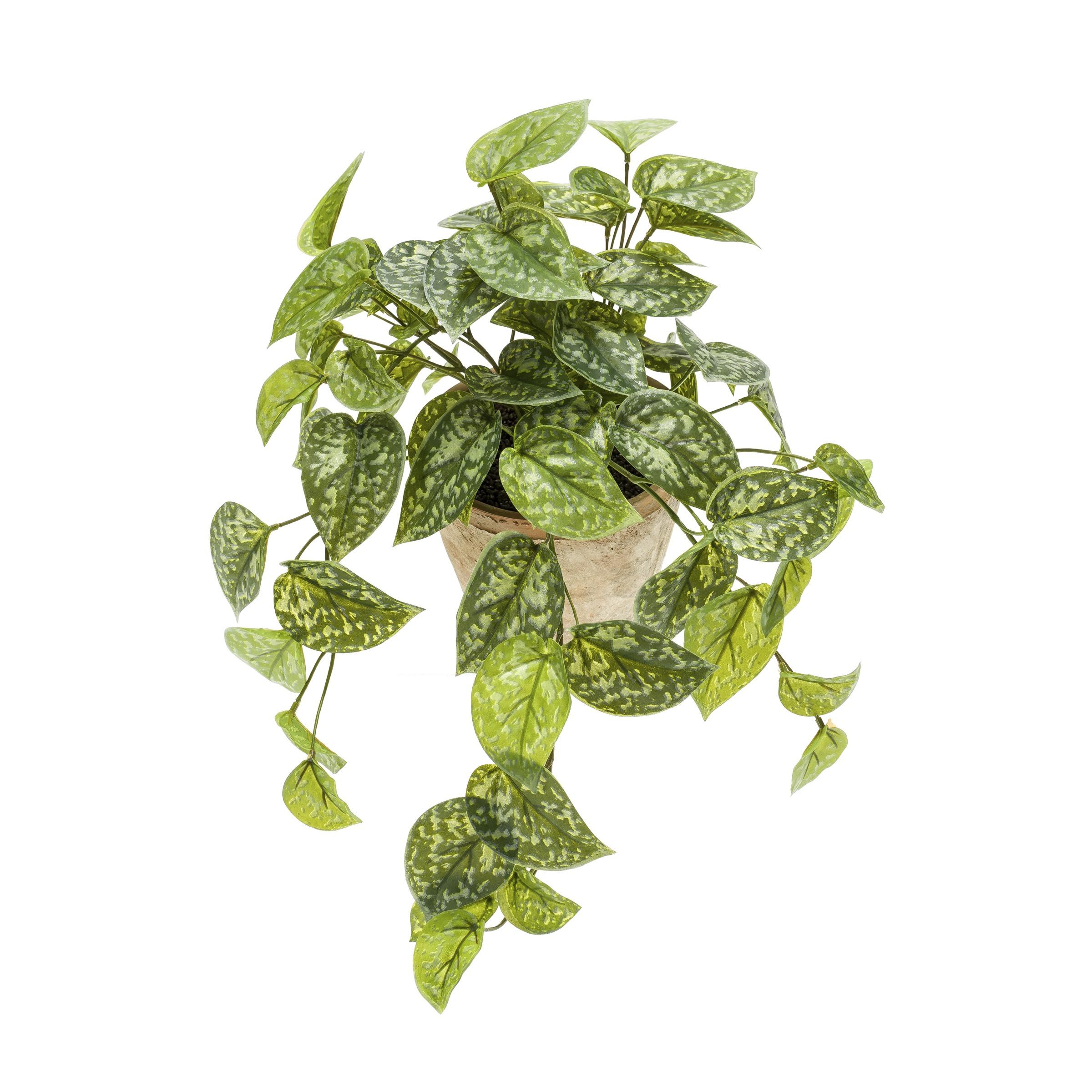 Kunstplant Scindapsus Pictus hanging bush 45 cm in pot