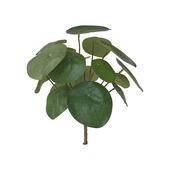 Kunstplant Pilea 25 cm