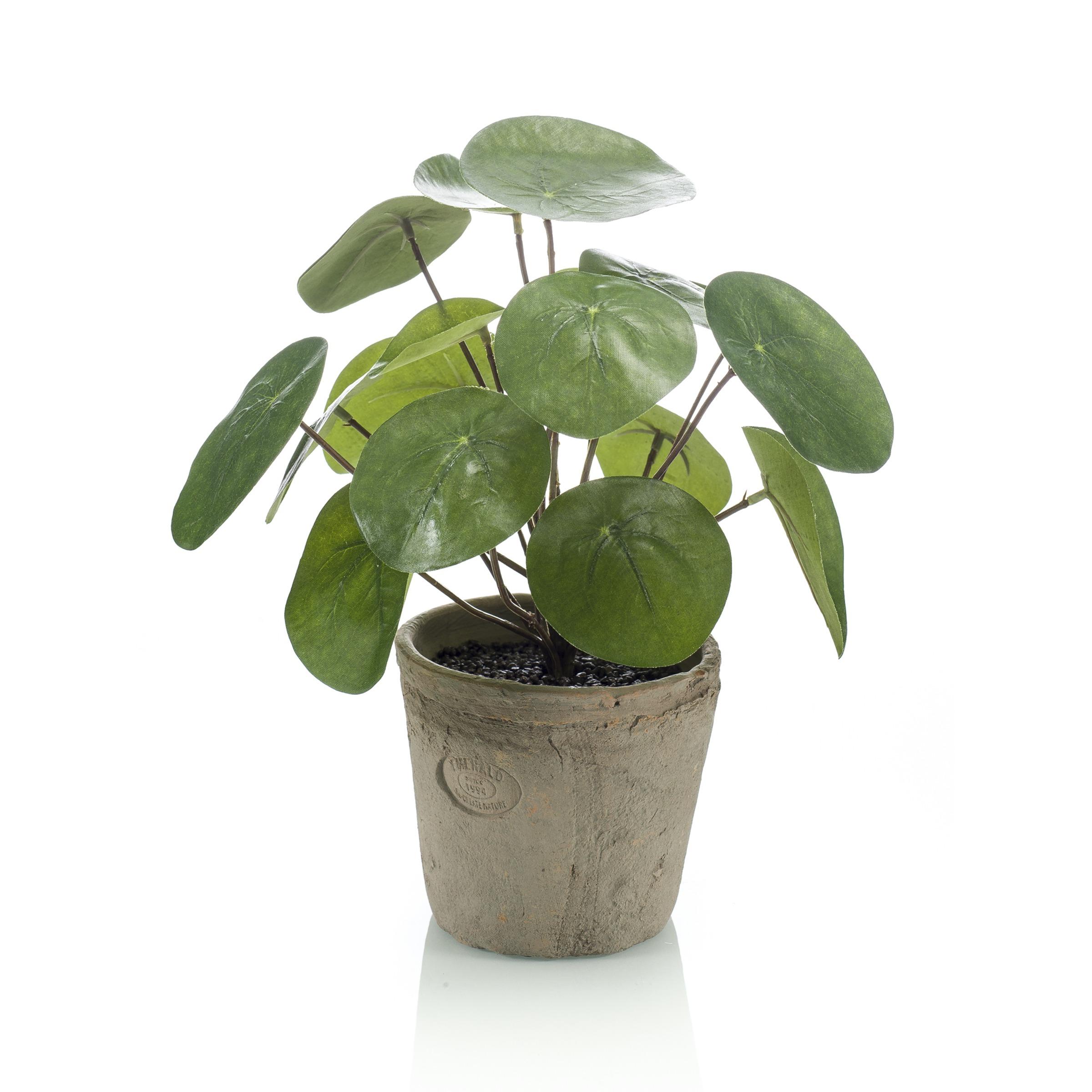 Pannenkoek kunstplant Philea bush 25 cm in pot