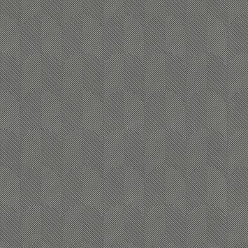 Vliesbehang roma antraciet (dessin 105154)