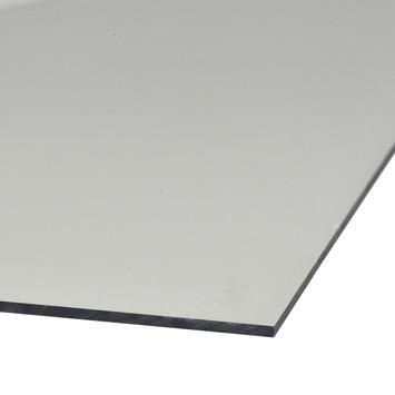 Martens acrylplaat transparant 50x100 cm dikte 2 mm