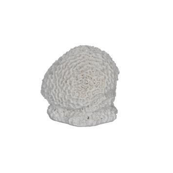 Koraal wit 9x11x11 cm
