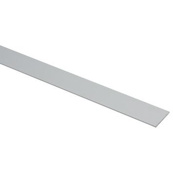 Platprofiel Alu Geanodiseerd 30x2mm 250cm