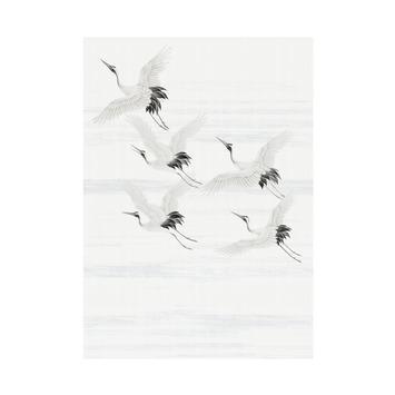 Fotobehang kraanvogels (dessin 105420)