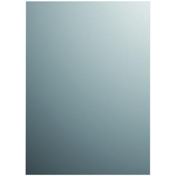 Plieger basic spiegel zilver 50 x 40 cm