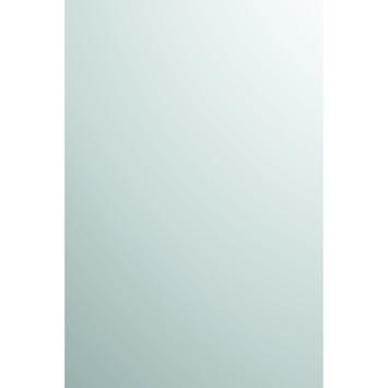 Plieger basic spiegel zilver 60 x 40 cm