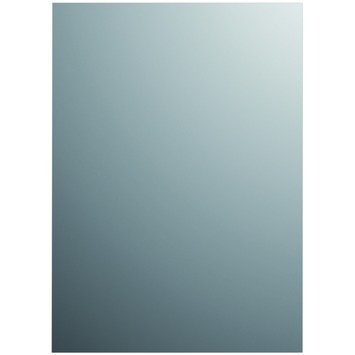 Plieger basic spiegel zilver 120 x 30 cm zilver