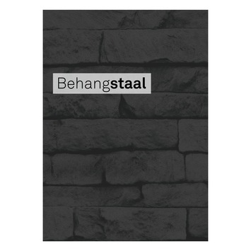 Behangstaal vliesbehang odyssee zwart (dessin 101344)
