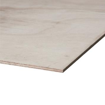 Okoumé garant hardhout mulitplex 250x122 cm dikte 10 mm