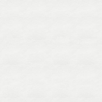 Best Budget Buy papierbehang wit (dessin 329865)