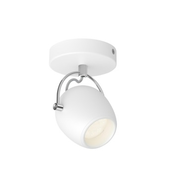 Philips spot Rivano 1-lichts wit