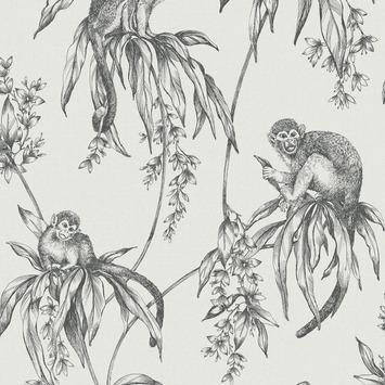 Vliesbehang saimiri antraciet aapje (dessin 106157)