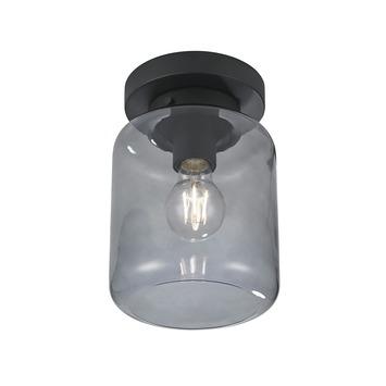 KARWEI plafondlamp Juno rookglas