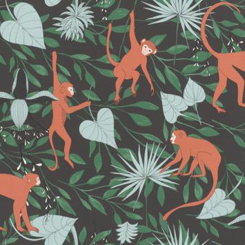 Claas vliesbehang apen oranje/zwart (dessin 540147)