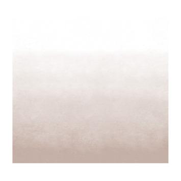 vtwonen fotobehang degrade roze (dessin 107857)