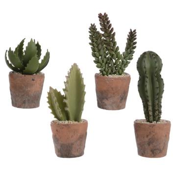 Cactus in pot kunst - assorti