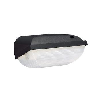 Philips buitenlamp zwart dag/nacht sensor