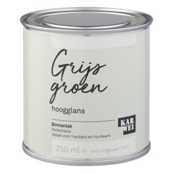 Karwei binnenlak hoogglans 250 ml grijs groen