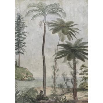 Fotobehang Palm island (dessin 107861)