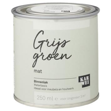 Karwei binnenlak mat 250 ml grijs groen