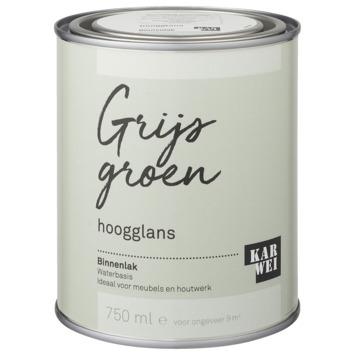 Karwei binnenlak hoogglans 750 ml grijs groen