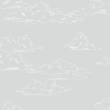 Vliesbehang vintage wolk grijs (dessin 108555)
