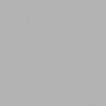 KARWEI kleurstaal aluminium horizontale jaloezie zilver 16 mm (221)