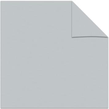 KARWEI kleurstaal lichtdoorlatend plisségordijn licht grijs (6006)