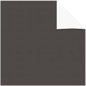 KARWEI kleurstaal lichtdoorlatend plisségordijn grijs (11319)