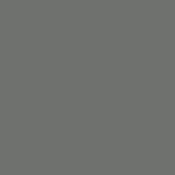 KARWEI kleurstaal kunststof verticale lamellen grijs (9485)