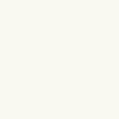 KARWEI kleurstaal kunststof verticale lamellen wit (5042)