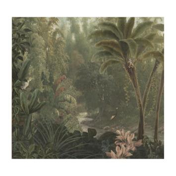 Fotobehang jungle (dessin 89441)