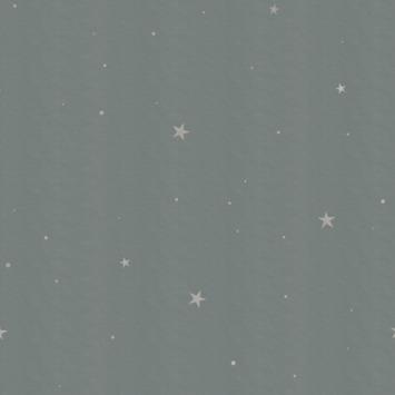 Vliesbehang little stars groen (dessin 112034)