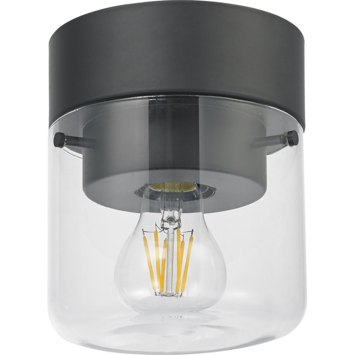 KARWEI plafondlamp Neal rookglas zwart