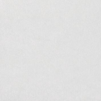 Raamfolie Rice paper (346-0350) 45x200 cm