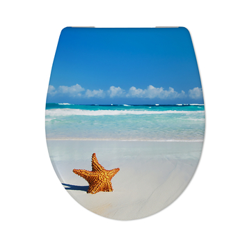Cedo Starfish wc bril softclose duroplast
