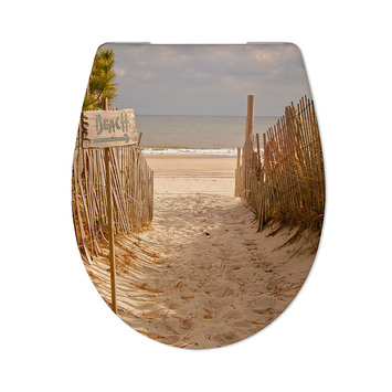 Cedo Beach path wc bril softclose duroplast