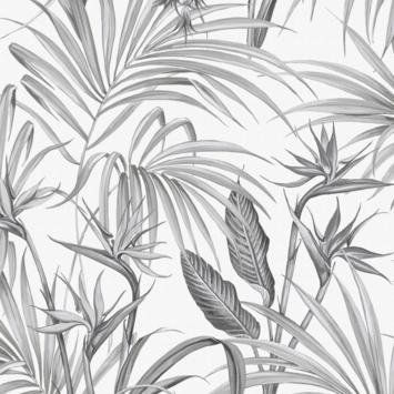 Vliesbehang strelitzia grijs (dessin 111740)