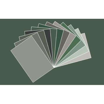 KARWEI Kleurkaartset Green Thoughts 12 stuks