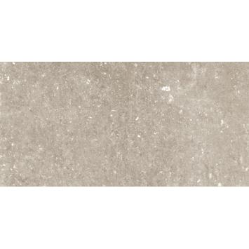 Vloertegel/wandtegel City taupe 30x60 cm 1,05m²