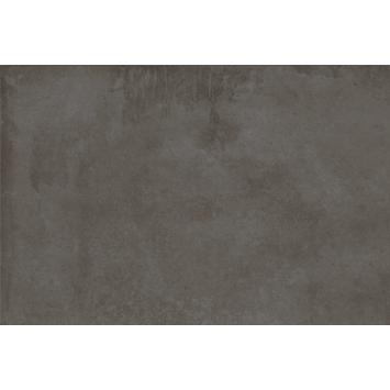 Vloertegel/wandtegel Bergen antraciet 30x60 cm 0,9m²