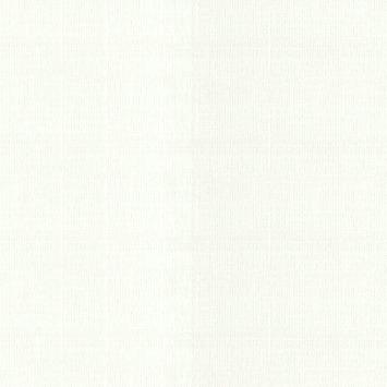 Overschilderbaar vliesbehang Maine wit (dessin 18007)