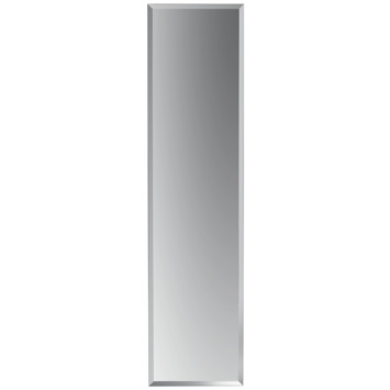 plieger spiegel zilver 120 x 30 cm kopen spiegels karwei. Black Bedroom Furniture Sets. Home Design Ideas