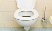 /advies/sanitair/wc-ontstoppen