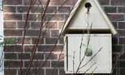 /advies/tuin/vogelhotel-bouwen