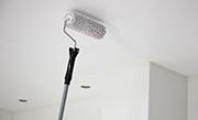 /advies/verf/plafond-schilderen