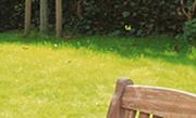 Gazon onderhoud: Grasmaaien, verticuteren & bemesten