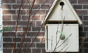 Vogelhuisje met voederplank